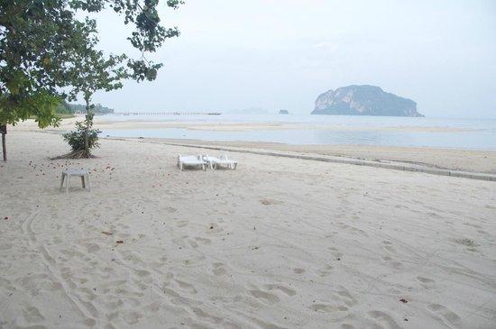 Koh Yao Yai Village : Beach