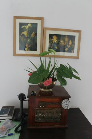 Mandira Bungalows: Paintings in the common areas
