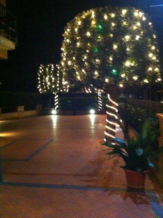 Hotel Ristorante da Graziano: giardino