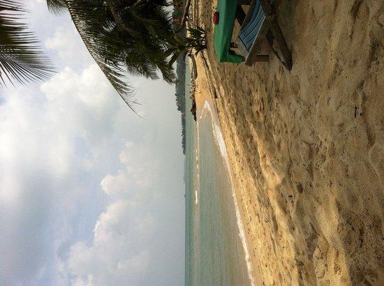 Nature Bar: Perfect beach setting