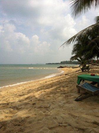 Nature Bar : Perfect beach setting