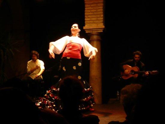 Museo del Baile Flamenco: Dance