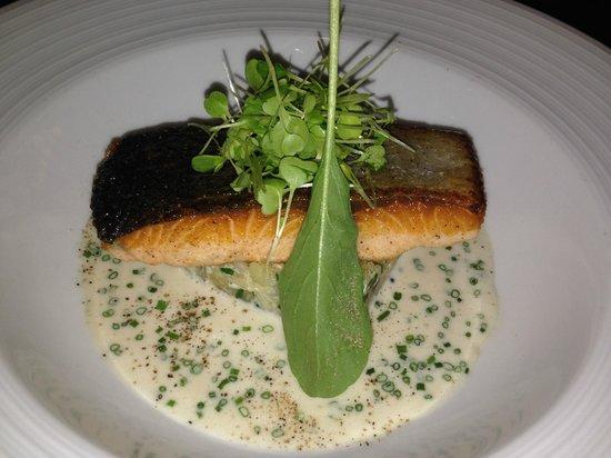 Whale's Belly Restaurant & Bar: salmon