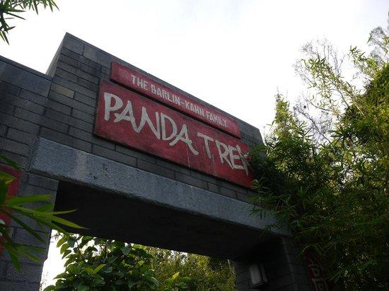 San Diego Zoo : パンダ舎入口