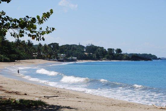 Turtle Beach by Rex Resorts: Turtle beach