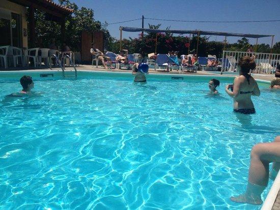 Harriet Apartments: pool!