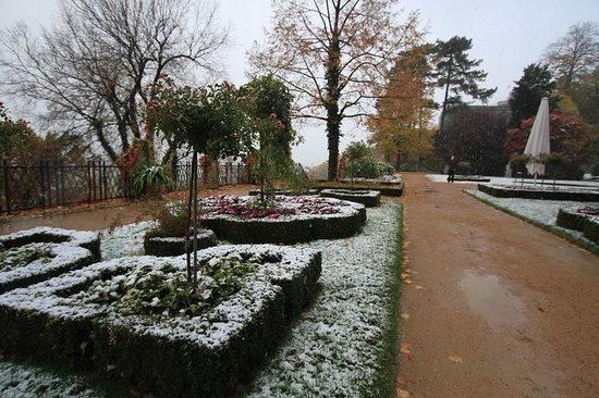 Schloss Eckberg: garden