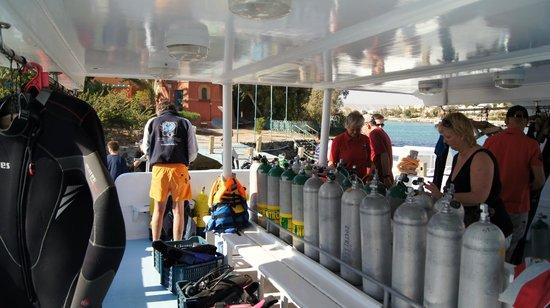 TGI Diving El Gouna: Very organized and clean