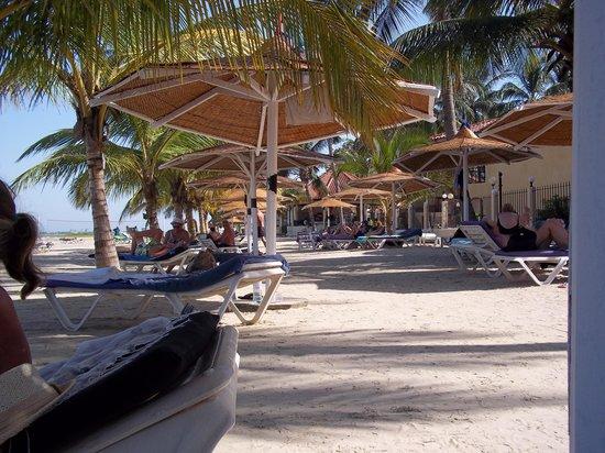 Ocean Bay Hotel & Resort : Beach area in front of hotel
