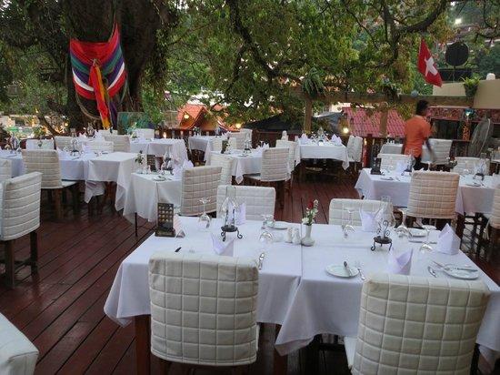 Bella Vista Restaurant: Der heilige Baum im Balla Vista