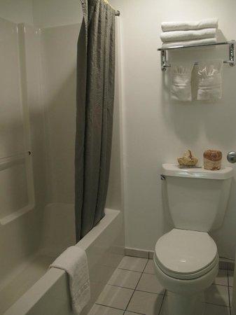 Black Canyon Motel: the bathroom