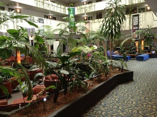 Novotel Darwin CBD: the hotel lobby