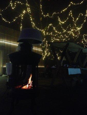 Cafe Fara : Tree lights