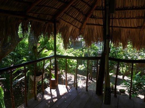 La Mariposa Spanish School and Eco Hotel: view into the huge garden of the spanish school