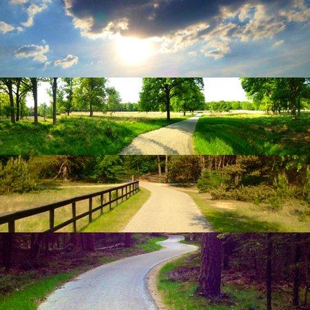 De Hoge Veluwe National Park: Park pathways