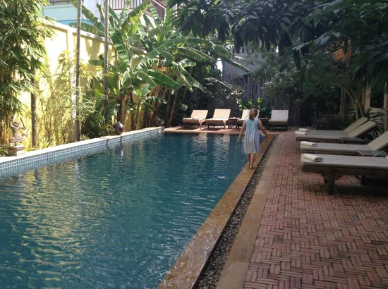 Golden Mango Inn: the pool was just as nice as the photos looked