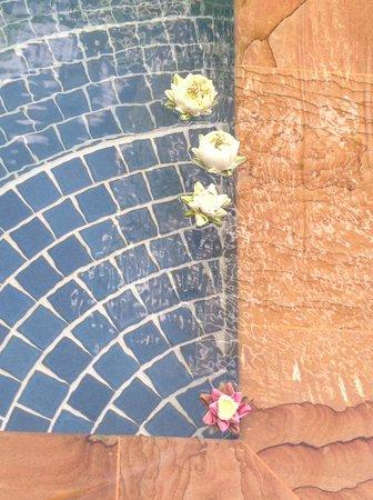 Golden Mango Inn: lovely touch - floating flowers