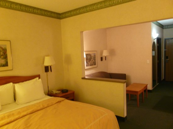 Comfort Suites Phoenix North : King Room 2
