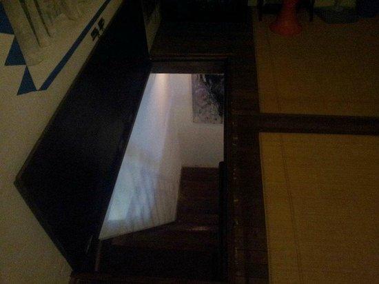 The Bridge Loft: A peek down the stairs - it's not that steep