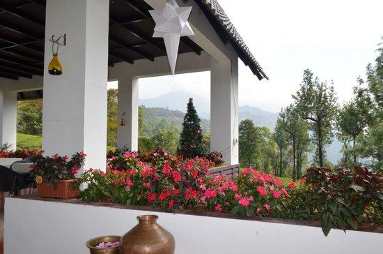 Gruenberg Tea Plantation Haus: Roof top restaurant