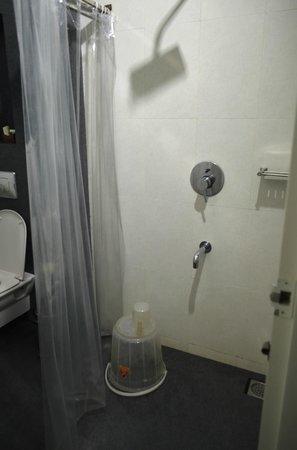 Gruenberg Tea Plantation Haus: Toilet