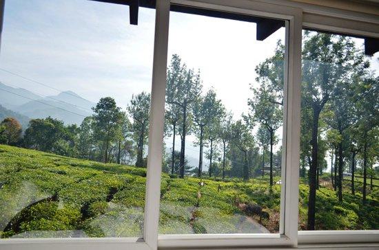 Gruenberg Tea Plantation Haus: View from window 1