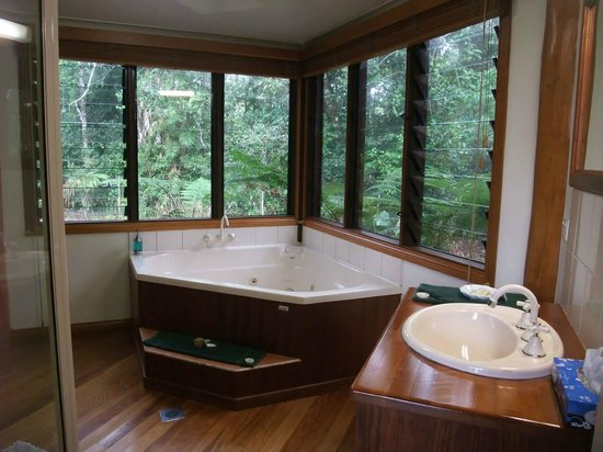 The Canopy Rainforest Treehouses and Wildlife Sanctuary: Downstairs bathroom