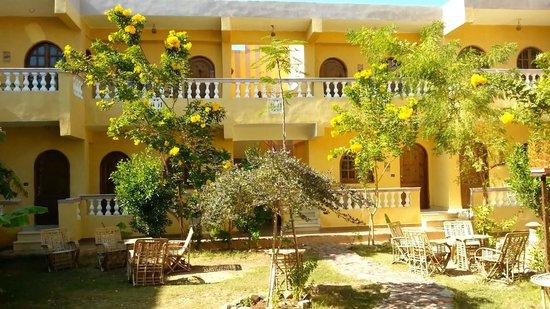 SeaHorse Hotel: our lovely garden
