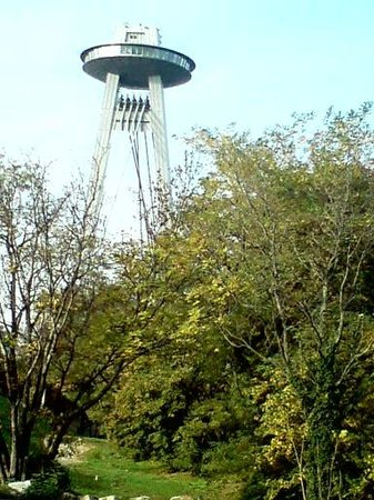 UFO Observation Deck: Ufo vom Park gesehen.
