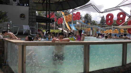 Piscina com ondas photo de thermas dos laranjais for Olimpia piscina de onda
