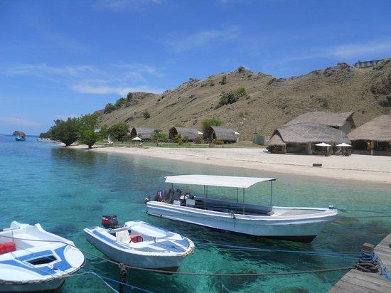 Komodo Resort & Diving Club: spiaggia