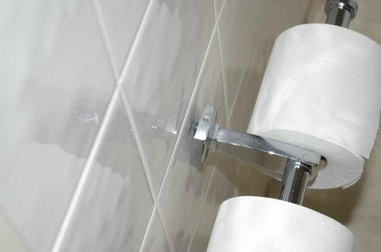 Scotland's Hotel & Spa : toilet roll holder