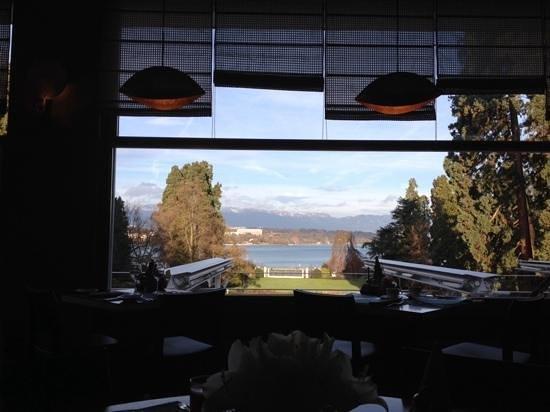 Hotel du Parc des Eaux-Vives: vista dalla sala da pranzo