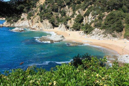 Jardin Santa Clotilde : Красота природы