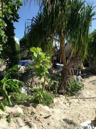 The Sun Siyam Iru Fushi Maldives : Vu sur notre supposée villa