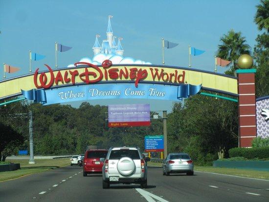 Rosen Inn at Pointe Orlando : Disney!