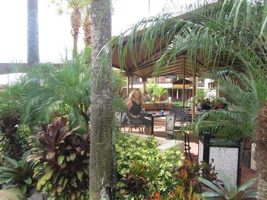 Rosen Inn at Pointe Orlando : Terasse vor dem Hotelshop sehr netter Platz zum verweilen auf ein Getränk!