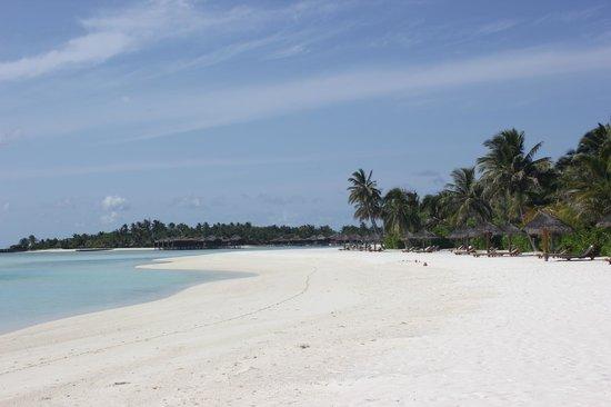 Anantara Dhigu Maldives Resort: playa