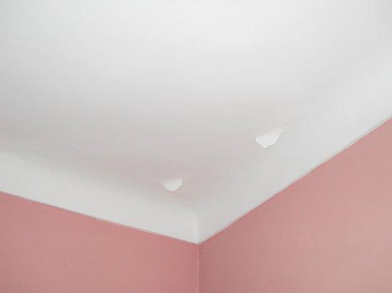 Riad El Farah: techos de la habitación
