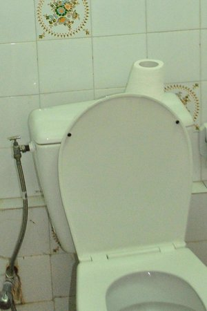 Dar Ahl Tadla : a little toilet paper for the guest