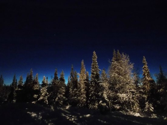 Lapland Hotel Pallas : Northern lights visible 200 days a year, but sadly not on our trip