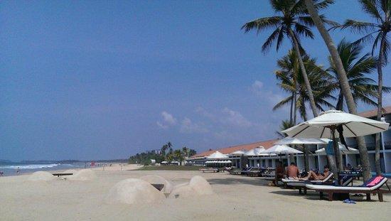 The Surf Hotel: Beach