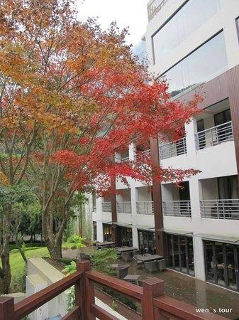 Silks Place Taroko: 初冬衛斯里西餐廳外鮮艷的楓紅