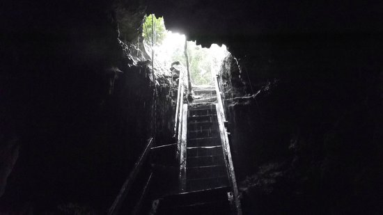 Plage d'Akumal: entrada al cenote