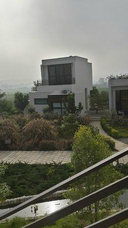 The Golden Tusk: villa suite