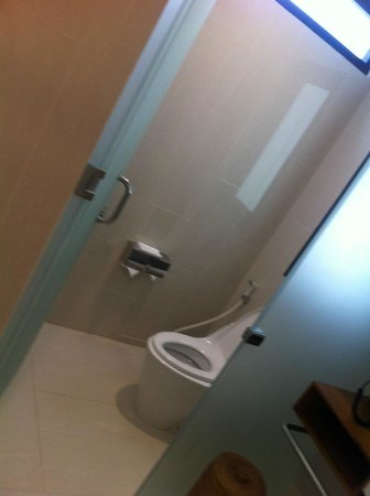 Turi Beach Resort: big toilet