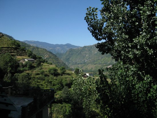 Himalayan Orchard Huts: View from my window