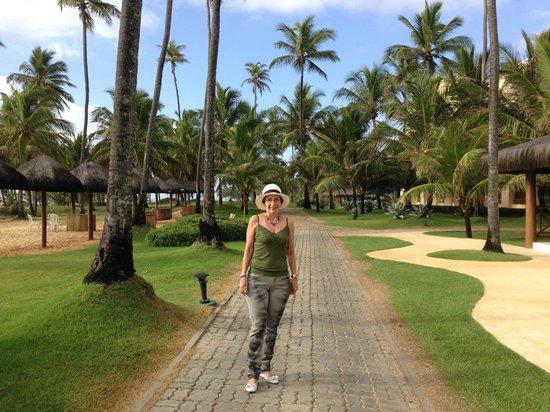 Iberostar Bahia : caminho entre praia e piscina