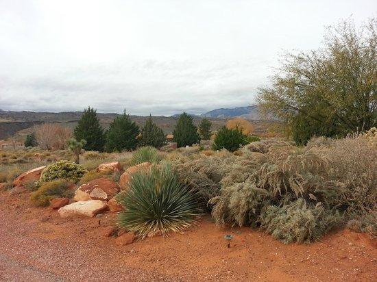 Kayenta scenery