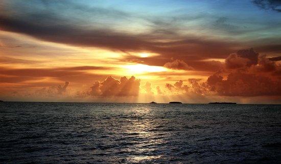 Shady Shores Beach Resort : Beautiful Sunset